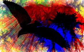 чёрный, ворон, чтож, ты, вьешься