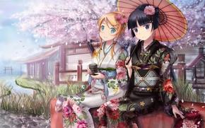 девушки, кимоно, чай, зонт, зонтик, сакура, река, лепестки