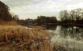 Харьковская область, Чугуевский лес, река, начало апреля