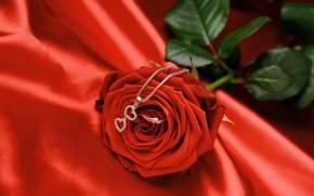 любовь, романтика, цветок, красная, роза, кольцо, подвеска, драгоценности, день святого валентина, сердце, шелк, атлас, ткань