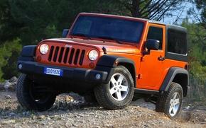 джип, ренглер, рубикон, красный, передок, внедорожник, лес, деревья, Jeep