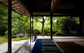 foresta, tempio, alberi, Zen, silenzio, Relax, meditazione, ricerca, casa