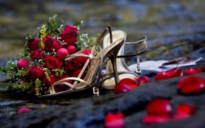 Туфли, букет, роз