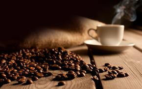 taa, caf, gro, conselho, andar