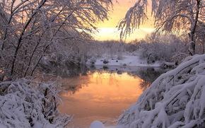 inverno, tramonto, neve, natura