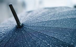 макро, капли, зонт, зонтик, дождь