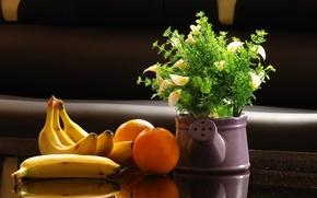 still life, bananas, oranges, Flowers