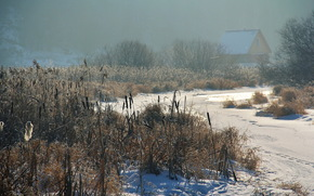 зима, вечер, река, камыш, дом, снег