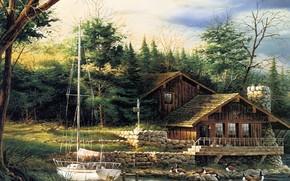 画, 房子, 游艇, 森林