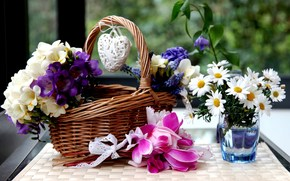 Flores, Ciclamen, Margaritas, jacintos, Freesia, canasta, corazn, vidrio, agua