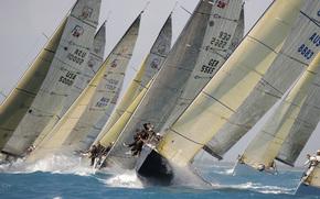regata, gara, yacht, vento, onde, Florida, Miami