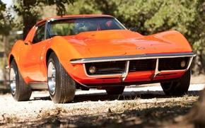 шевроле, корвет, стингрэй, передок, оранжевый, классика, деревья, Chevrolet