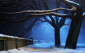 Nature, hiver, arbres, parc, neige, nuit, lumire, aleykii, mur