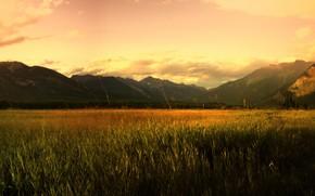 field, Mountains, sunrise