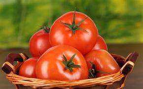 помидоры, томат, красные, еда
