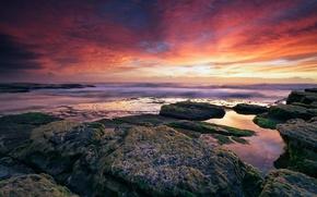 puesta del sol, mar, ocano, cielo, rocas, piedras, Algas
