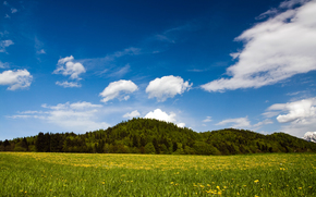 Austria, erba, Hills, verdura