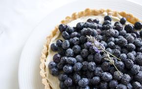 еда, тарталетка, черника, ягода, тарелка, цветы, лаванда, сахар