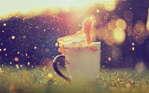 cup, splash, caramel, bokeh, reflections, grass