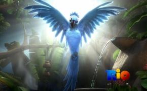 Rio, cartone animato, perla, pappagallo, ara