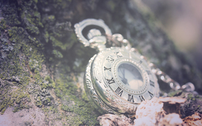 macro, watch, chain, background, stones, leaves, Roman numerals, greens