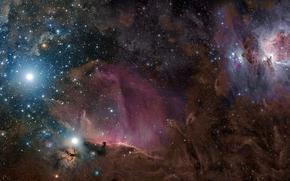 Orion, constellation, nebula, gas, dust, Star
