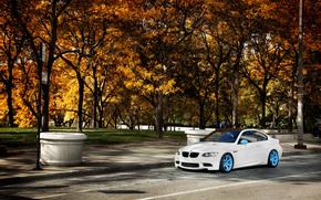 BMW, Color blanco, otoo, Los rboles, BMW