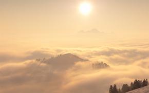 paesaggi, natura, nebbia
