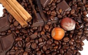 еда, пища, сладости, шоколад, корица, орехи, фундук, зерна кофе