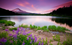 Trees, Nature, landscape, lake, Flowers, the way, sky, clouds, sunset, Mountains