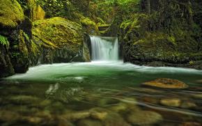 водопад, лес, зелень, камни