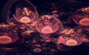 fiore, bellezza, macro, Fantasia, colore