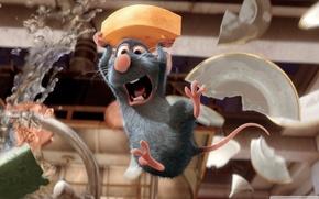 mouse, ratto, rattatuy