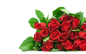 Flowers, Rose, bouquet, red roses, Beautiful, cool, well, great, Beautiful, beauty, I love you, because you, romance