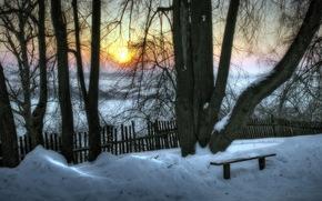 tramonto, inverno, alberi, panchina