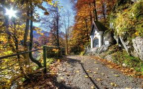 rvores, estrada, capela