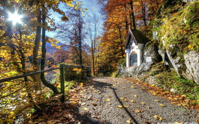 alberi, strada, cappella