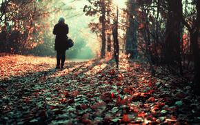 одиночество, ворох листьев, девушка