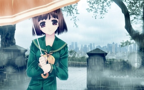 аниме, девочка, дождь, зонтик, деревья, город