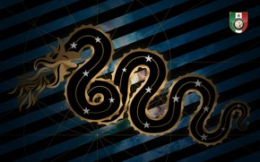 футбол, футбольный клуб, эмблема, змея, ФК Интер, Нерадзурри, Италия, Милан