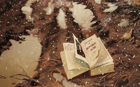 Winter, book, dead souls