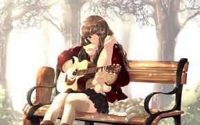 girl, guitar, bench, cat