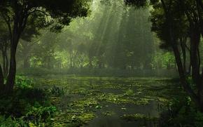 Representacin, Naturaleza, bosque, lago, Los rboles