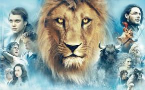 Narnia, film, leone, Re, mouse, Guerra