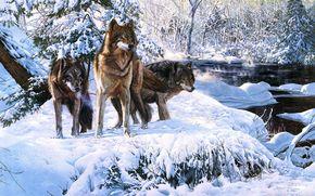 Lupi, inverno, neve, fiume, foresta, Arte