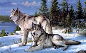 joseph hautman, Art, Wolves