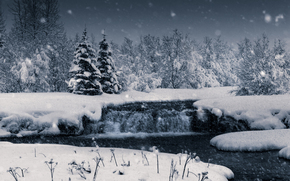 nature, Winter, snow, forest, Snowflakes