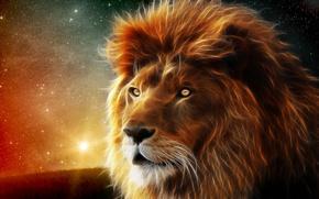 Arte, Photoshop, leone