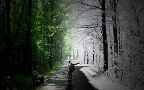 summer, Winter, man