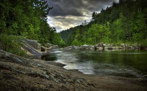 bosque, Los rboles, verduras, primavera, pequeo ro, costa, piedras, Voluntarios, cielo, las nubes, las nubes